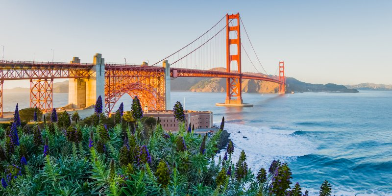 Article Image Where Can I Study English in San Francisco, CA